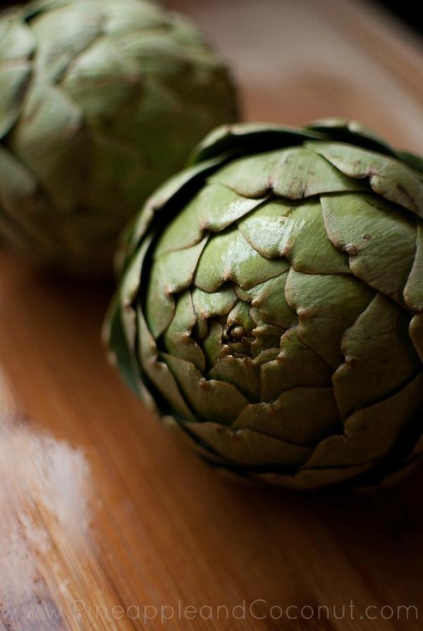 Artichoke 35mm www.pineappleandcoconut.com