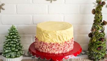 CPWM Christmas Cake-3840