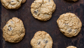Coconut chocolate chip cookies-2578