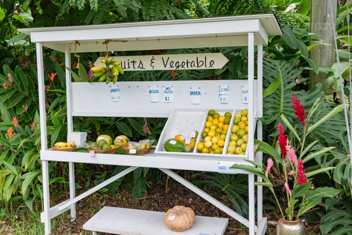 Hana Maui Fruit Stand Photo www.pineappleandococonut.com