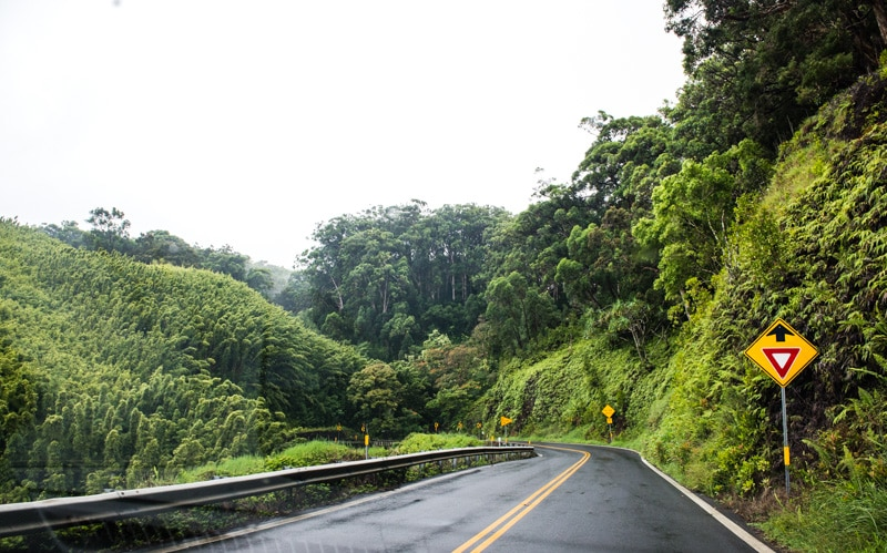 Road to Hana, Maui, www.pineappleandcoconut.com