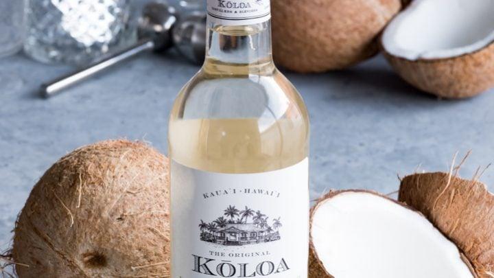 Coconut Rum Milk Punch