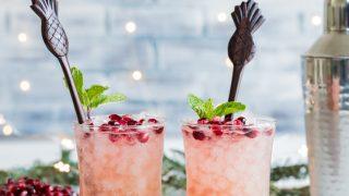 Pomegranate Passion Fruit Rum Fizz